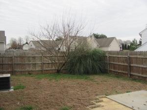 Mooresvlle Home For Sale - Fenced Back Yard
